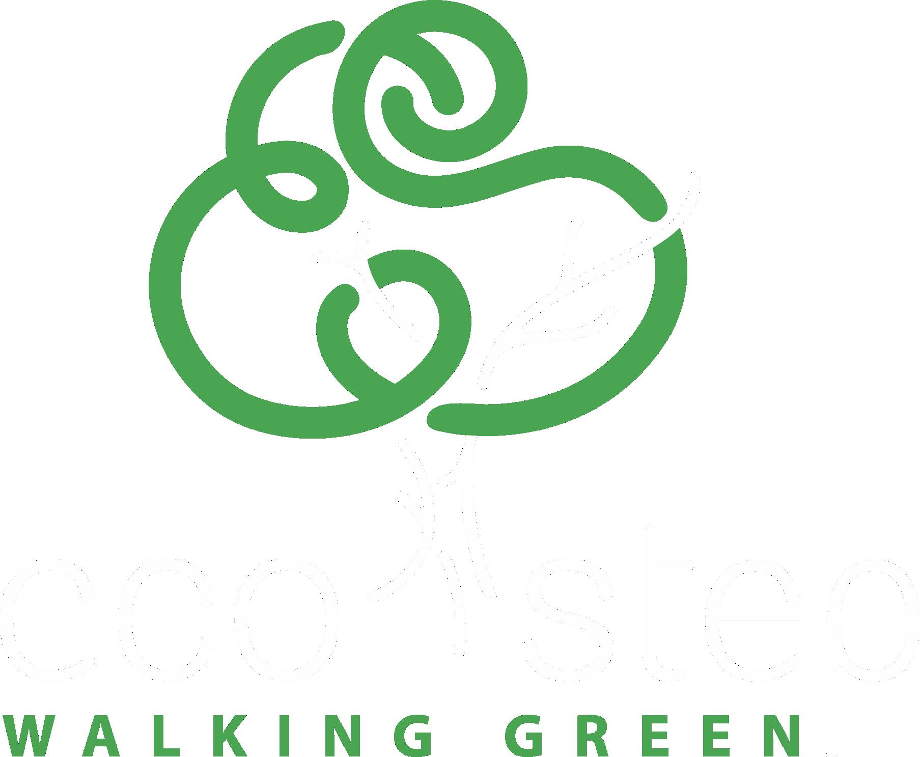 Ecostep LLC
